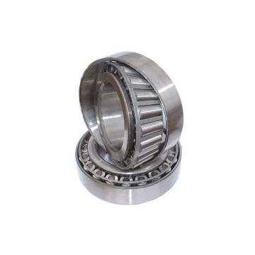 RA 107 NPPW Cylindrical Outer Ring Insert Ball Bearing 36.5125x72x39mm